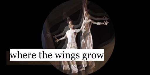 where the wings grow- contemporary dance show