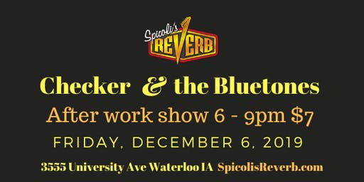 Checker and the Bluetones After Work Show
