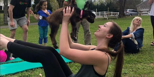 Goat Yoga Saturday November 16
