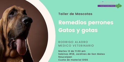 """Taller de mascotas """"Remedios Perrones y Gatos y Gotas"""""""