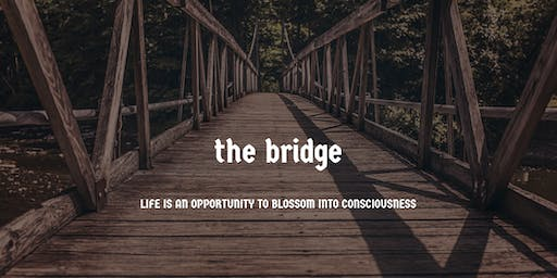 The Bridge - Awaken Consciousness