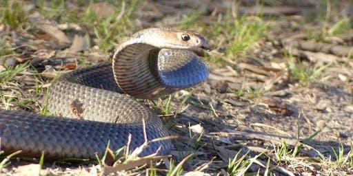 Snake Awareness Workshop - Ewingsdale