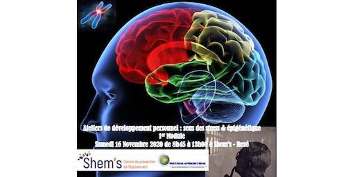 Développement personnel - sens des stress & épigénétique - 1er Atelier
