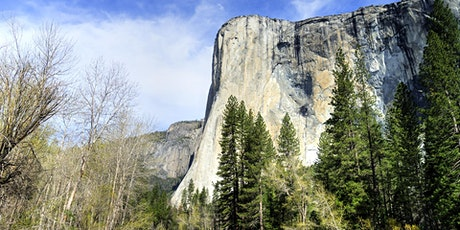 San Francisco to Yosemite National Park on Luxury Coach Bus - All Day Tour tickets