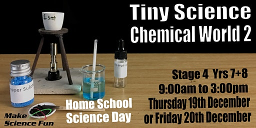 Make Science Fun - Homeschool TINY Science Day - Chemical World 2