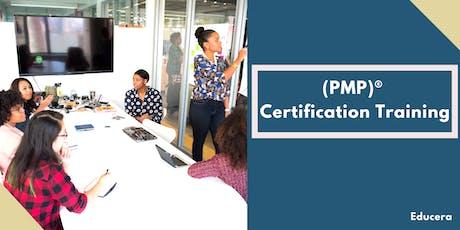 PMP Online Training in Brownsville, TX entradas