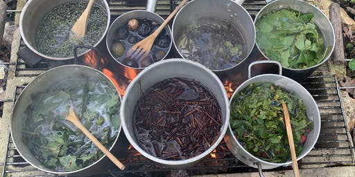 Natural  Dyeing at the  WildColour Kitchen