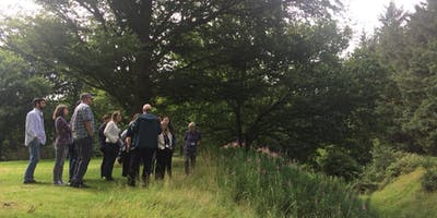 Guided Tour around the Antonine Wall: Rough Castle from the Falkirk Wheel