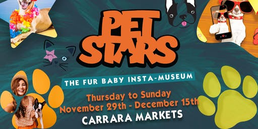 Pet Stars [Gold Coast] Friday Dog Sessions