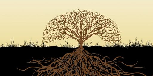 Une plante peut-elle pousser sous une pierre ? Ecopsychologie avec MM Egger