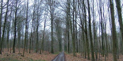 22km Vertrijk - Sint-Joris-Weert along GR512 (3/7)