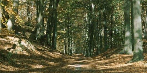 27km Sint-Joris-Weert to Bosvoorde along GR512 (4/7)