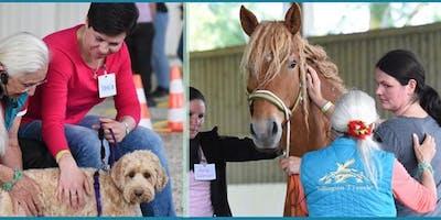 Linda Tellington-Jones: Exklusives Seminar für Pferde und Hunde