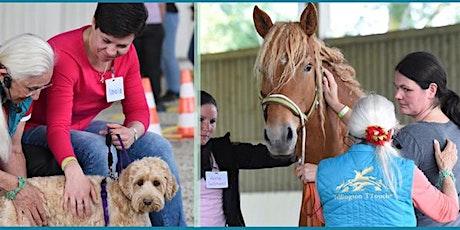 Linda Tellington-Jones: Exklusives Seminar für Pferde und Hunde Tickets