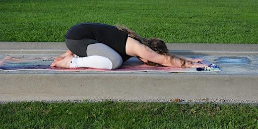 Yin Yoga Kurs - Dienstags ab 5.11.