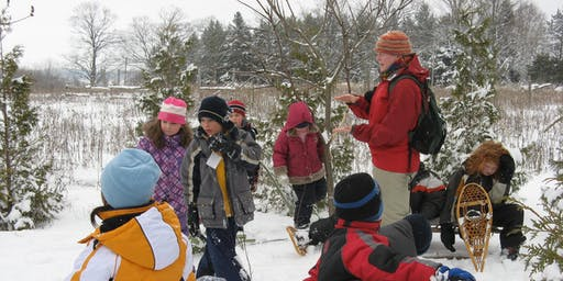 Winter Break Adventure Days Laurel Creek Nature Centre January 2020
