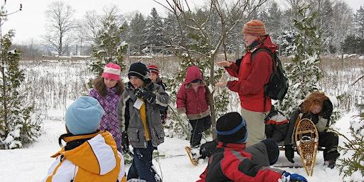Winter Break Adventure Days Laurel Creek Nature Centre January 2020