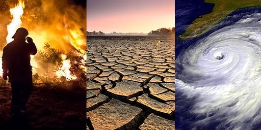 The Climate Crisis: Individual & Collective Action
