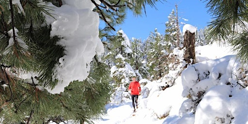 Winter trail running clinic