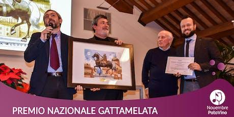Premio nazionale Gattamelata per la cultura della solidarietà biglietti