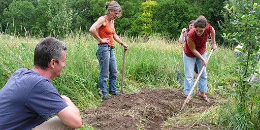 Jumpstart Your Yard:  Tips for designing a sustainable landscape