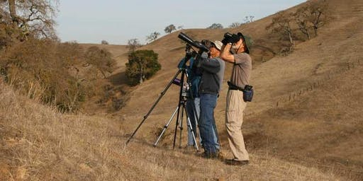 Laguna Seca Second Saturdays: Bird Walk!
