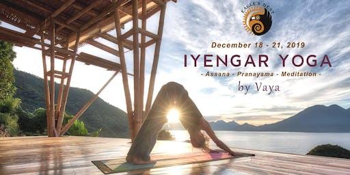 Iyengar Yoga - Asana:Pranayama:Meditation