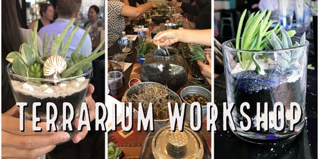 Plant Therapy: Terrarium Workshop tickets