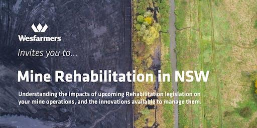 Mine Rehabilitation in NSW