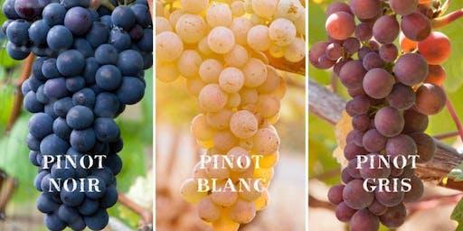 Class in a Glass of Pinot - Varietal Focus Masterclass
