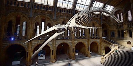 A history of life on Earth: A masterclass on evolution with experts from the Natural History Museum tickets
