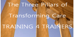 Three Pillars of Transforming Care - Training for Trainers