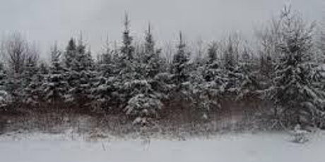 Guided Winter Hike with KELT: Tracking Winter Estuary Animals tickets
