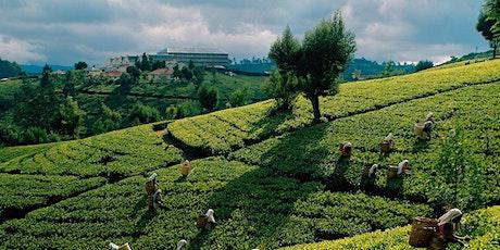 Travel Presentation: Sri Lanka 2020 tickets