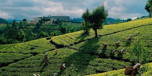 Travel Presentation: Sri Lanka 2020