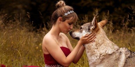 """Shooting """"Kuscheln mit deinem Hund"""" Tickets"""