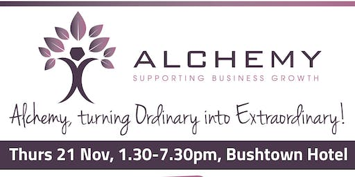 Alchemy: Meet the Mentor, Support from Stakeholders, Wisdom from Workshops