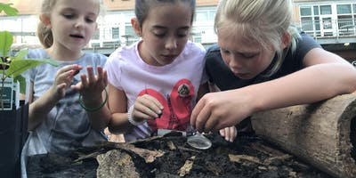 Environmental Experiences for Early Childhood- Fremont