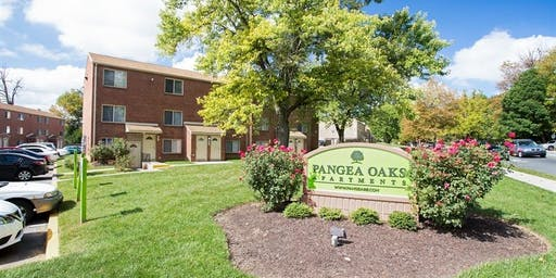 Pangea Oaks Open House - 11/23