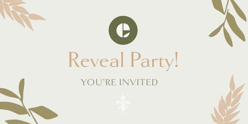 Reveal Party!