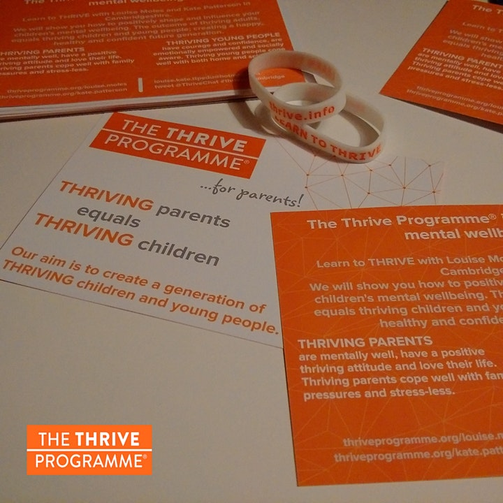The Thrive Programme for Parents image