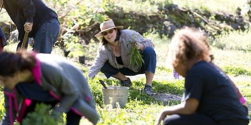 Habitat Garden Club Work Days