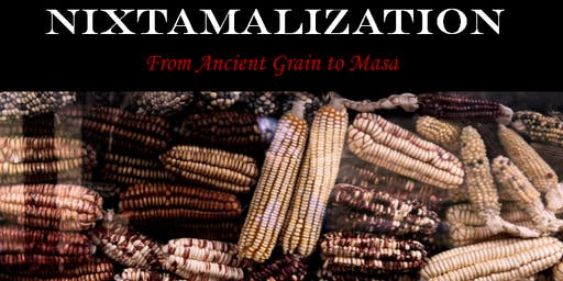 Nixtamalization - From Ancient Grain to Masa