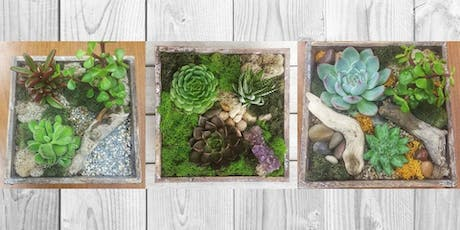 Rustic Terrarium Box Workshop tickets