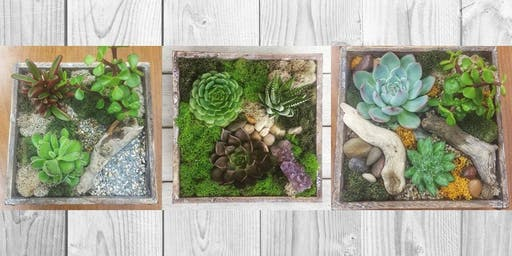 Rustic Terrarium Box Workshop