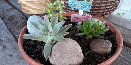 Succulent Propagation and Care Class tickets
