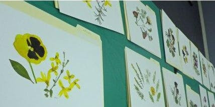 Pressed Flower Cards Workshop