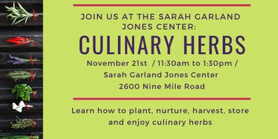 Nurturing and Enjoying Culinary Herbs