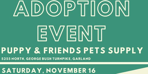 Garland Animal Services Adoption Event at Puppy and Friends Pet Supply
