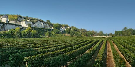 SOLD OUT! The Art of Living and the Wines of Southern France tickets